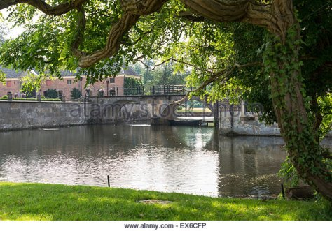otdoor-park-with-bridge-boat-and-very-old-trees-near-the-water-pond-ex6cfp