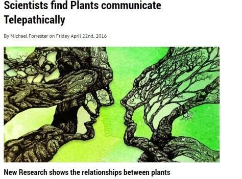 plants-comm